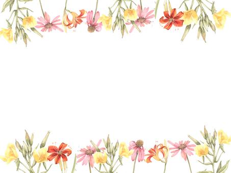 花枠381-ディリリー、プリムローズ花枠