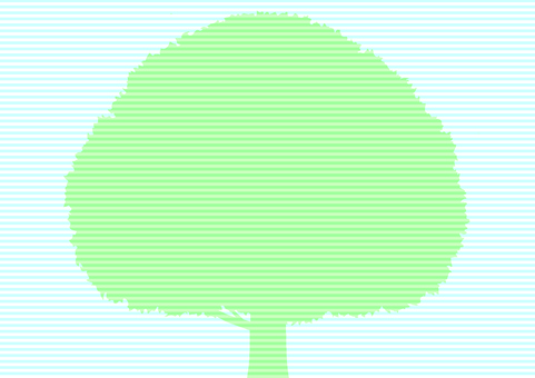 Big tree 3