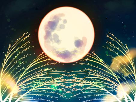 滿月,賞月