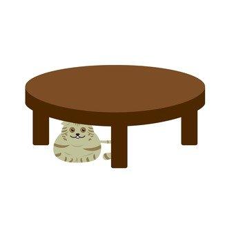Cat under the desk