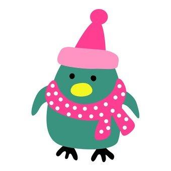 Penguin of winter equipment