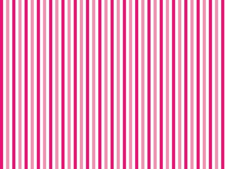 핑크 스트라이프