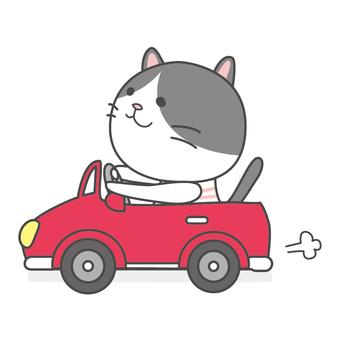ハチワレねこちゃん ドライブ
