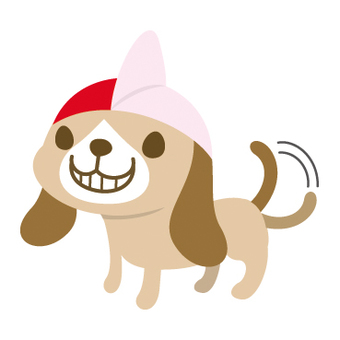 Red and White Hat Dog