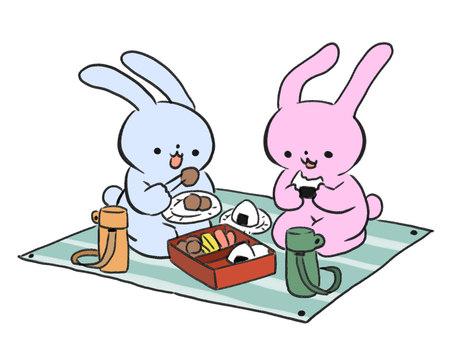 A rabbit enjoying a picnic