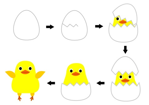 Chicks laid from eggs