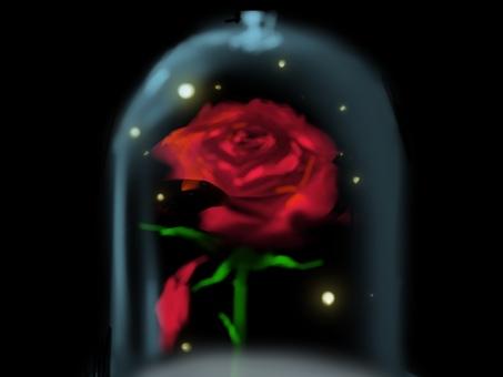 Rose crimson message