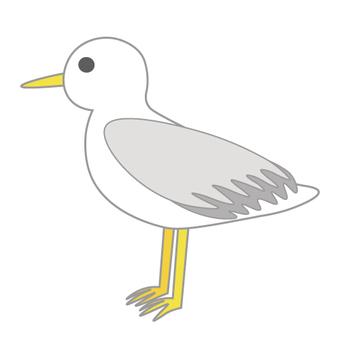 Birds (Seagull)
