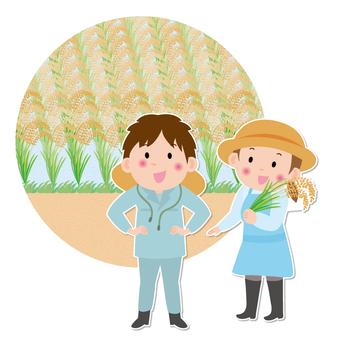 Farmhouse rice