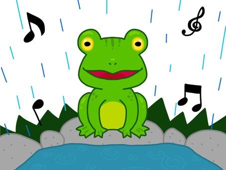 연못에서 개구리의 합창