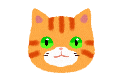 Brown tabby cat face frontal smile