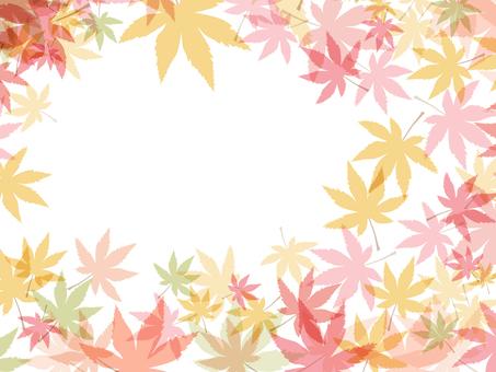 Autumn leaves 椛 Material 161016003