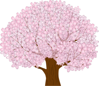 Simple cherry tree 4