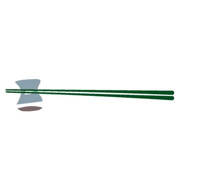 Chopsticks and chopstick rest