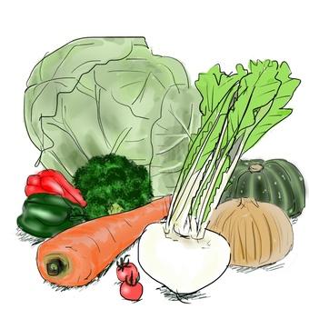 9 kinds of vegetables