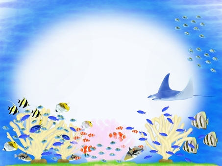 Okinawa sea fish message card