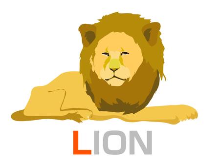 영어 학습 L LION