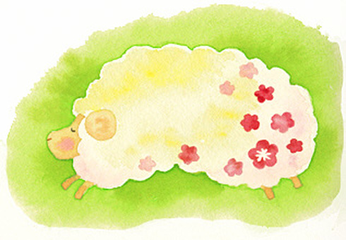 Sheep (002)