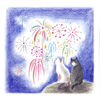 Cat's special seat fireworks