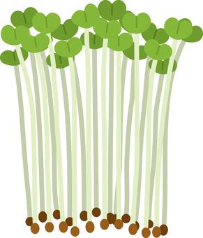 食品系列蔬菜抓蘿蔔