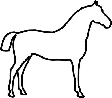 Horse thoroughbred