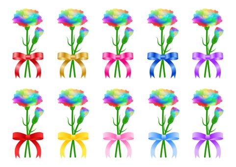 Rainbow Carnation Ribbon Set