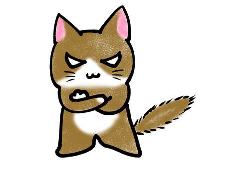An angry cat 201070819