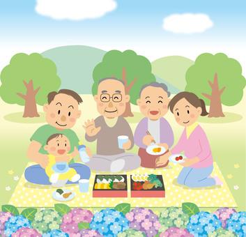 野餐家庭午餐例證