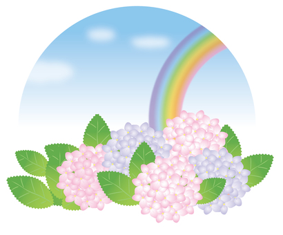 繡球花和彩虹