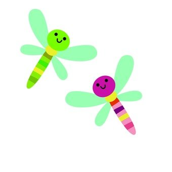 Two colorful dragonfly