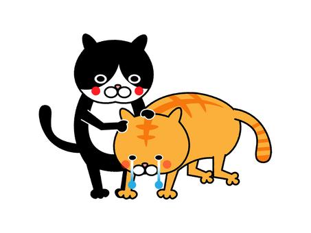 침체 고양이와 위로 고양이