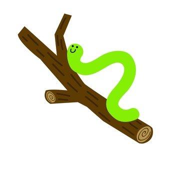 蠕蟲爬上一棵樹