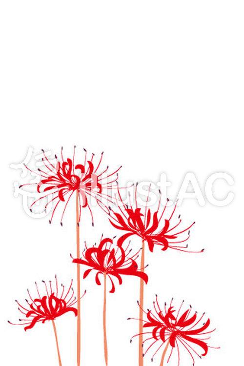 赤い彼岸花のスマホサイズイラスト No 83620無料イラストなら