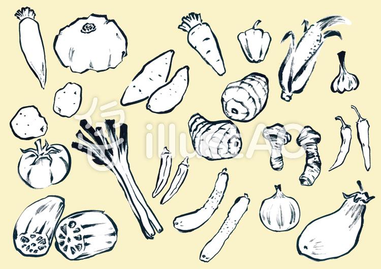 手描き野菜セット(モノトーン)のイラスト