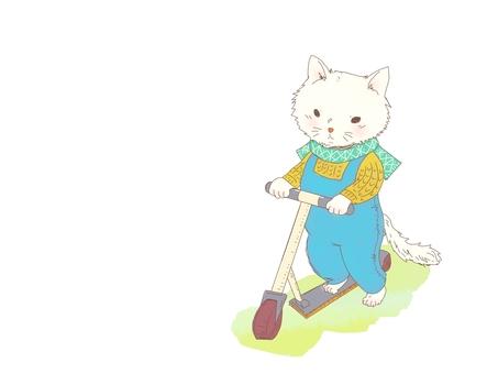 Kick skater and cat
