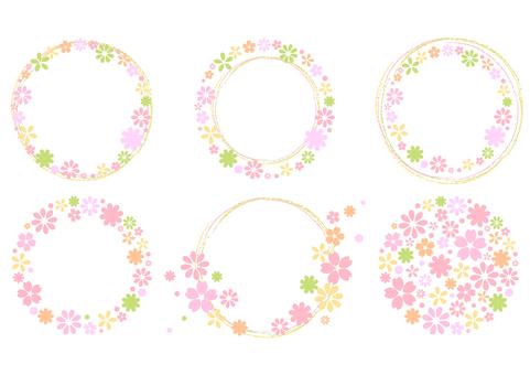 Cherry blossoms 278