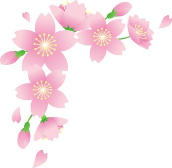 Sakura corner