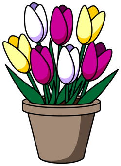 Potted tulip _ 02