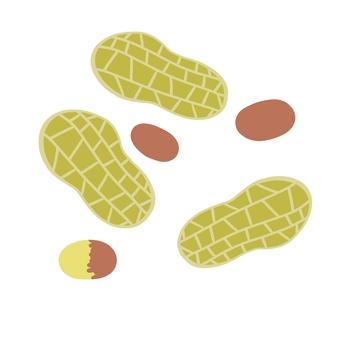 Peanut ②