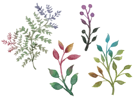Watercolor plants-1