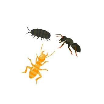 Pest full 3