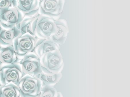Illusion of silver rose