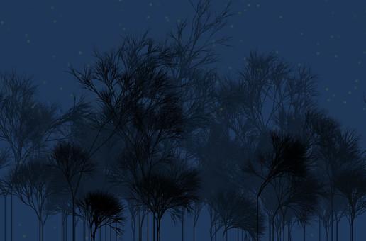 어두워 숲
