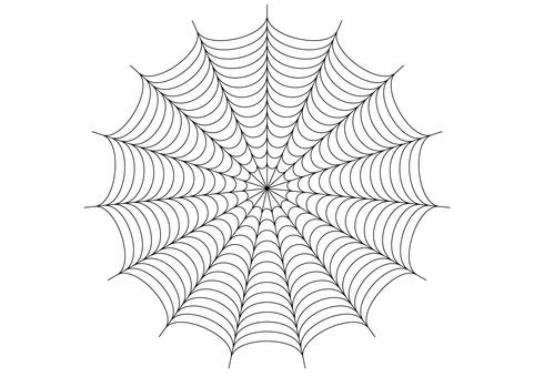Spider web 03 transparent png