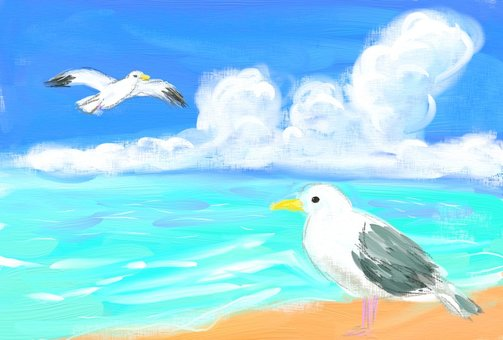 Gull and sky postcard