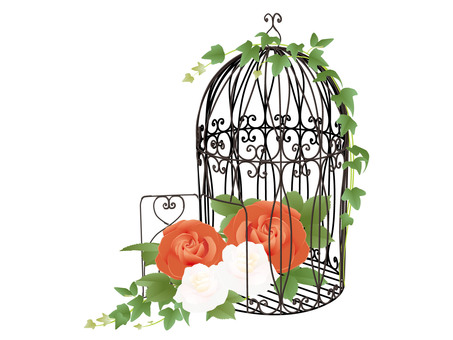 Flower cage black