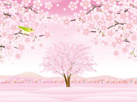 연 분홍색의 봄 풍경