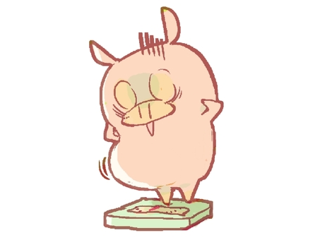 Weight increased and shocking pig