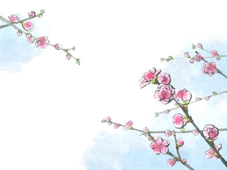 복숭아 꽃 7