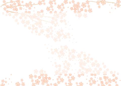 Cherry Blossoms Frame 8